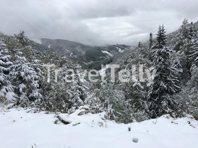 Snowy Low Tatras National Park in Slovakia