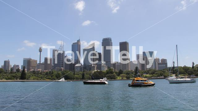 Farm cove and the Botanic Gardens with the skyline of Sydney Australia