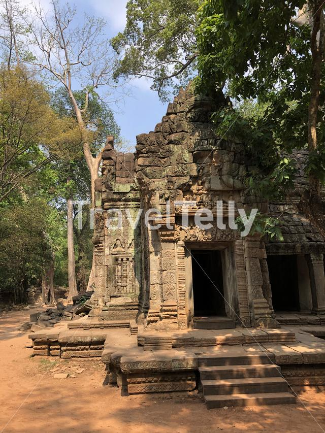 Ta Prohm Temple (tomb raider temple), Cambodia
