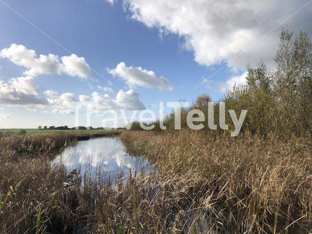 Canal in a nature reserve around Wolvega in Friesland, The Netherlands