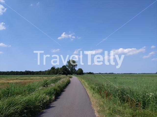 Bicycle path through nature reserve around Kalenberg, Overijssel The Netherlands