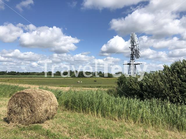 Landscape around Oudega in Friesland The Netherlands