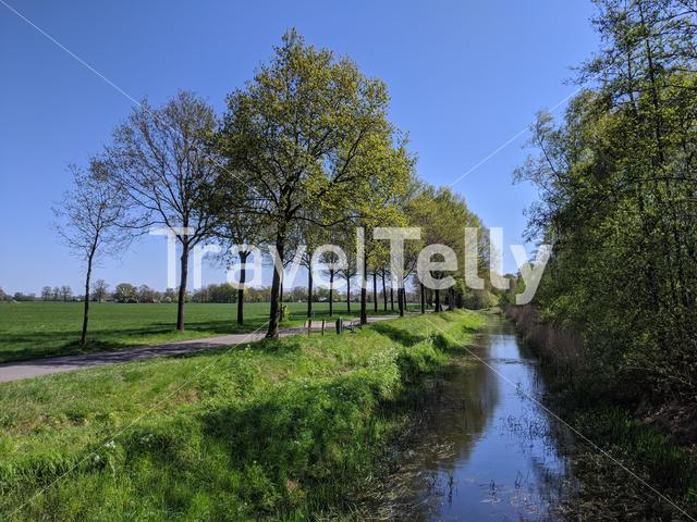 Road towards next to a canal in Gelderland during spring, The Netherlands