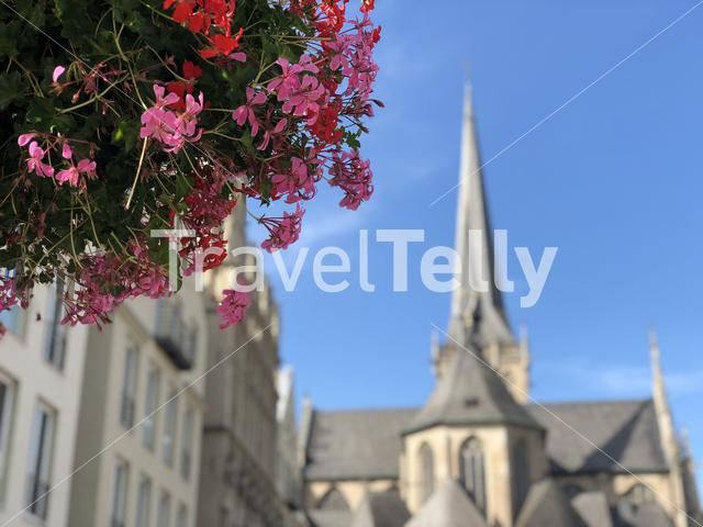 Flowers in front of the Willibrordi cathedral in Wesel, Germany