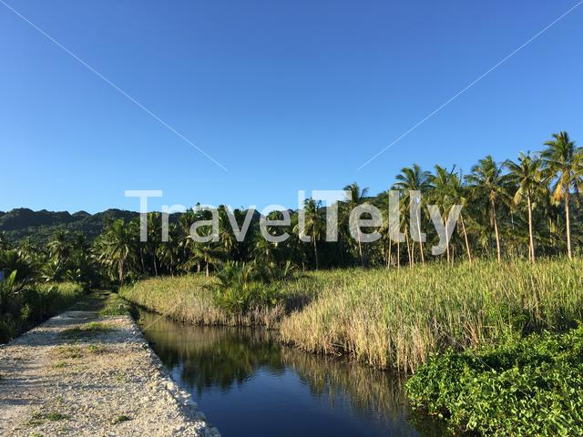 Path next to a pond at the countryside in Anda Bohol the Philippines