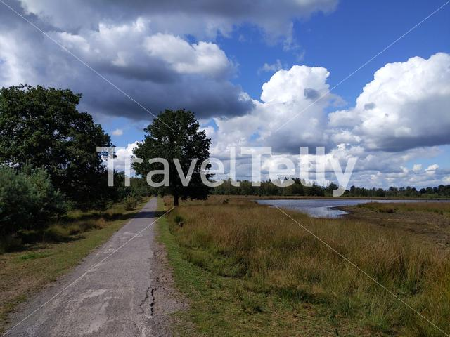 Landscape from the Drents-Friese Wold National Park in The Netherlands