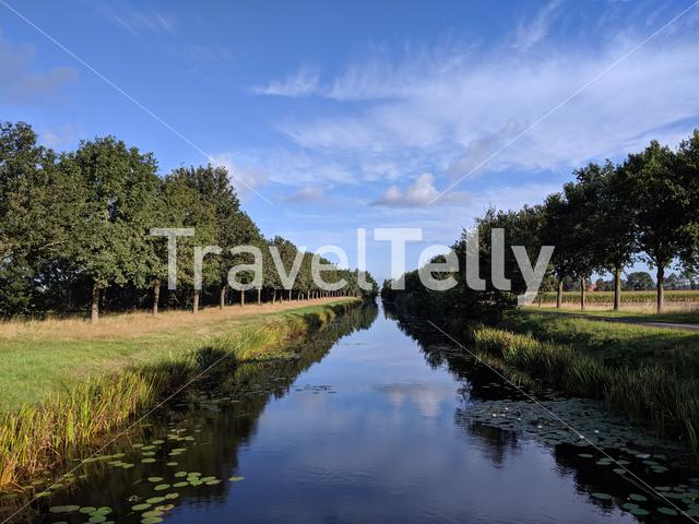 Trees reflection in a canal around Hoogehaar, Drenthe The Netherlands