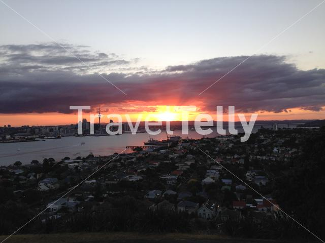 Pink Auckland skyline sunset from Mount Victoria