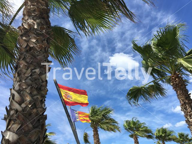 The flag from Spain and Catalonia at Malvarrosa Beach in Valencia Spain