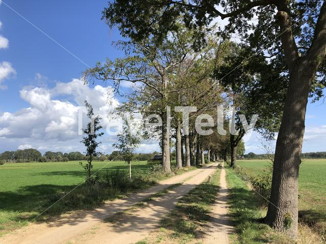 Sand road around Zelhem, Gelderland The Netherlands