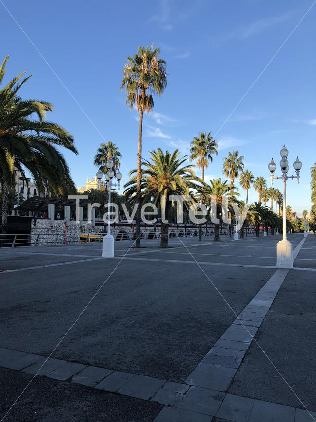 Boulevard around the port of Barcelona Spain