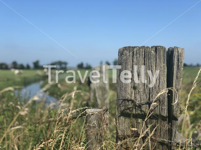 Farmland landscape from around Ee, Friesland, The Netherland