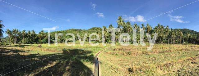 Panorama at farm land in Anda Bohol the Philippines