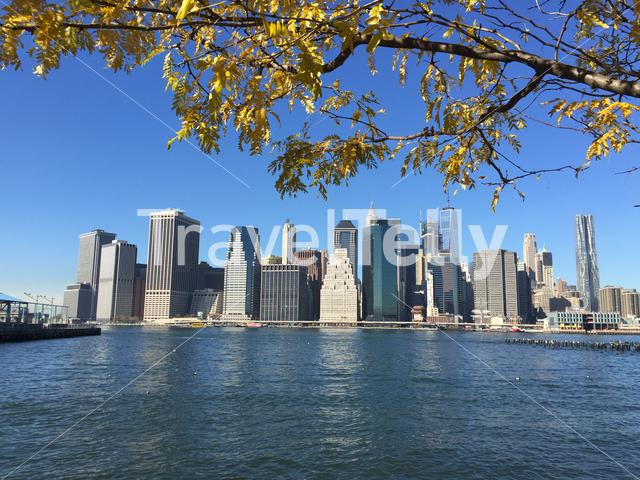 Manhattan skyline during autumn in New York City
