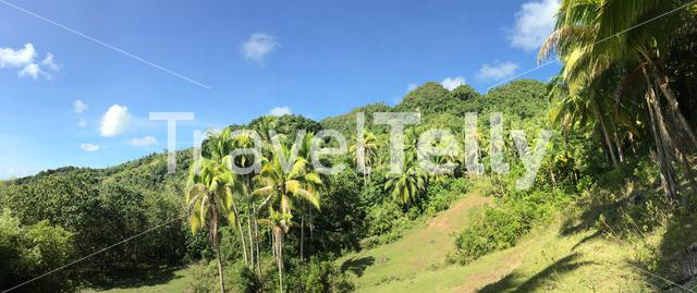 Panorama from farm land in the hills of Anda Bohol the Philippines