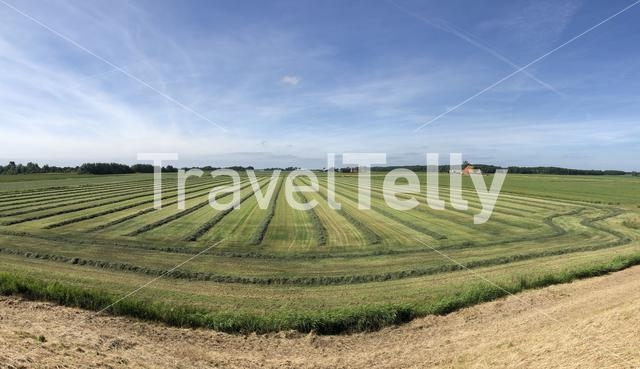 Panorama from farmland in Friesland, The Netherlands