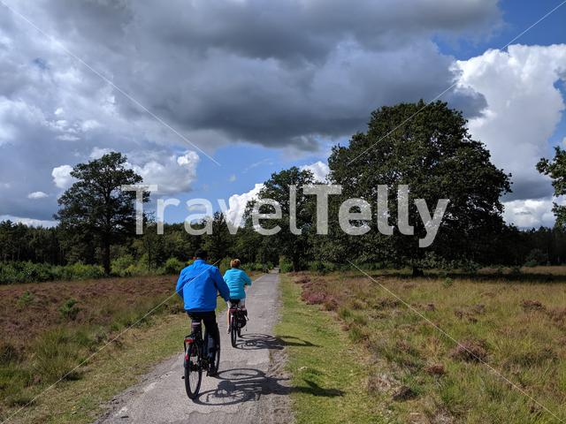 Tourists cycling at the Drents-Friese Wold National Park in The Netherlands