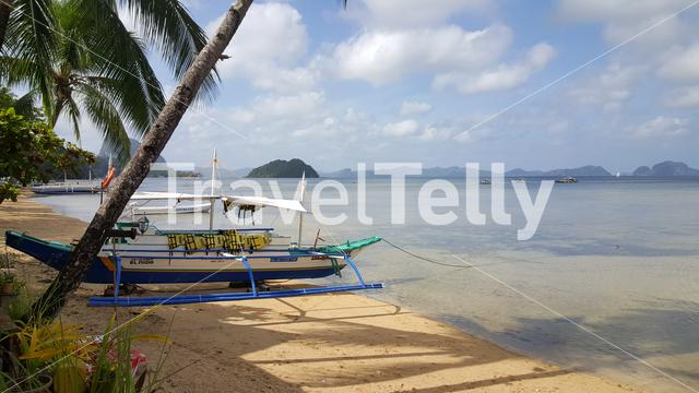 Coconut trees and boats at El Nido beach, Palawan, Philipinnes