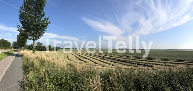 Panorama from a hay field in Friesland The Netherlands