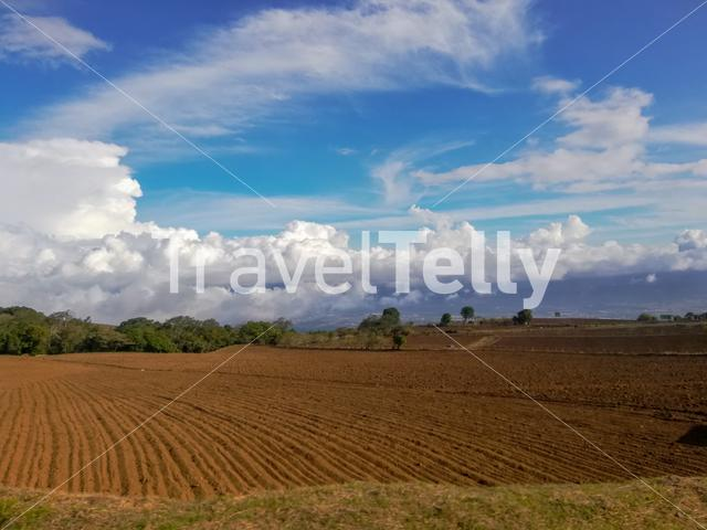 Plowed Field By the Road, Cartago, Costa Rica