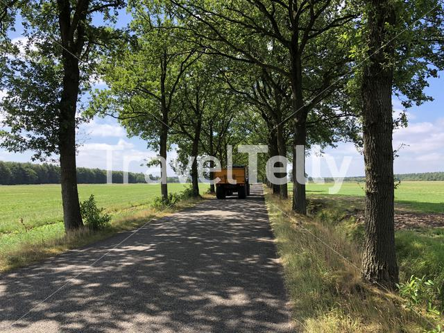 Tractor on a road through the Drents-Friese Wold in Appelscha, Friesland The Netherlands