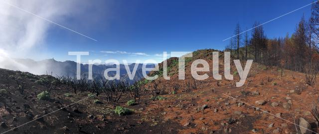 Panorama from Gran Canaria with roque nublo on the background