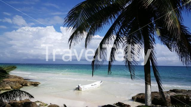 Small blue bay with a boat and palmtree at the coast in Tulum Yucatan, Mexico