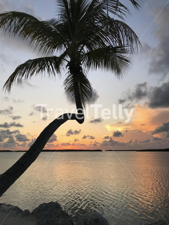 Sunset at the Florida Keys in the USA