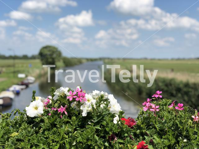 Canal in Burgwerd, Friesland The Netherlands
