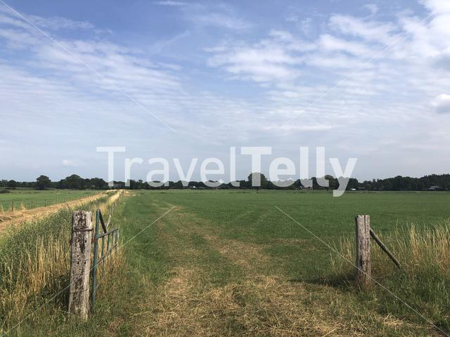 Farmland around Zelhem, The Netherlands