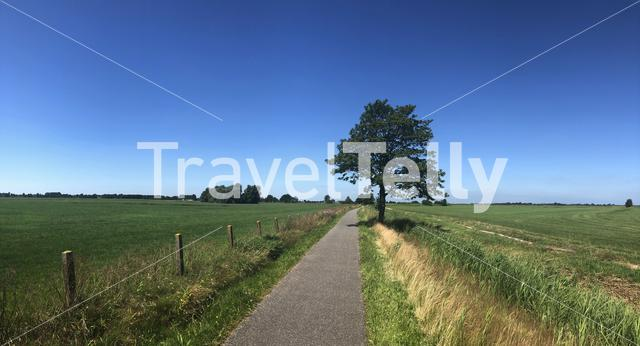 Panoramic landscape from around Oudwoude in Friesland The Netherlands