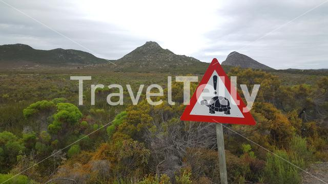 Turtle road sign in South Africa