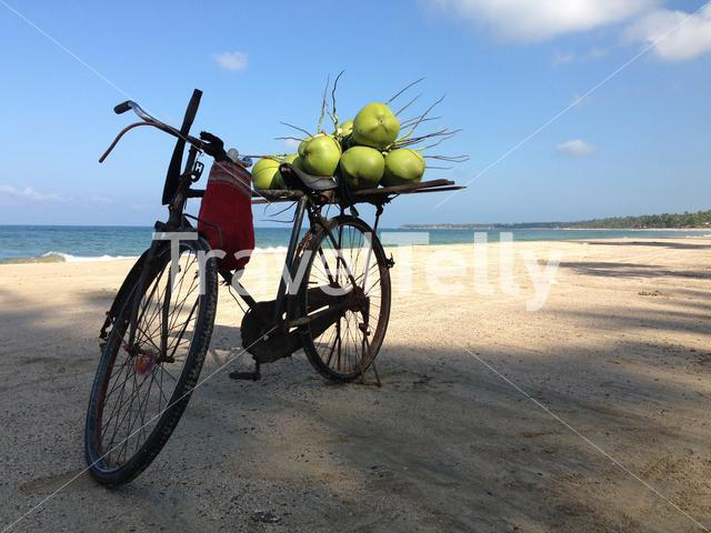 Bicycle with coconuts at Ngwe Saung beach in Myanmar