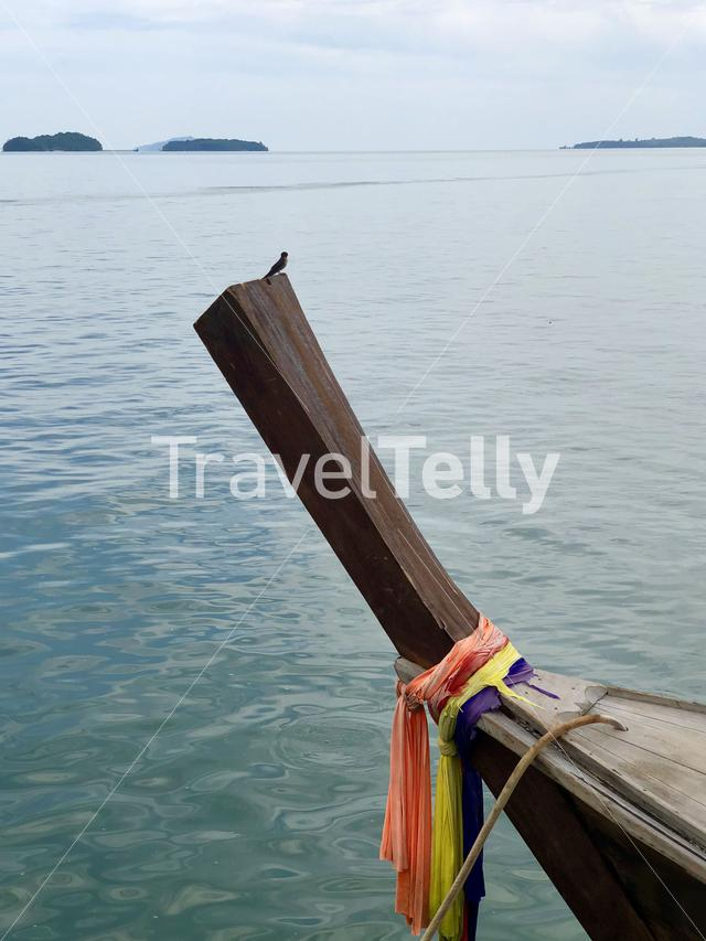 Swallow on a bow of a long-tail boat in Koh Lanta Noi, Thailand