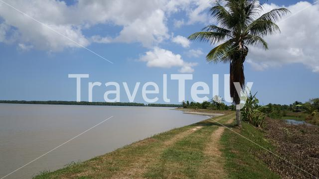 Suriname river from Nieuw Amsterdam