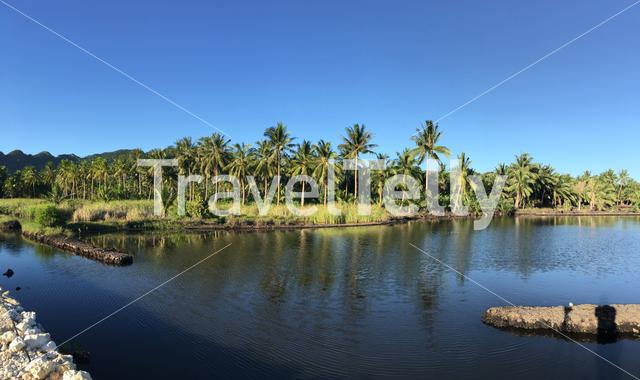 Panorama from a pond at Anda Bohol the Philippines