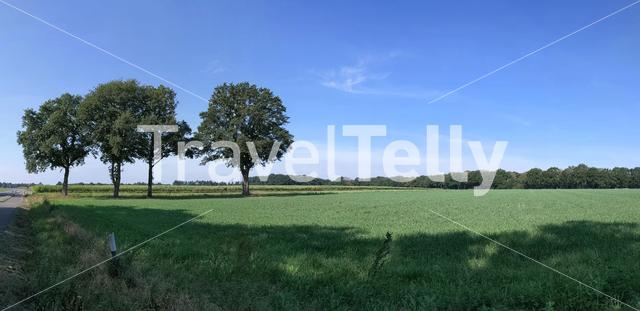 Panorama from scenery around Getelo in Germany