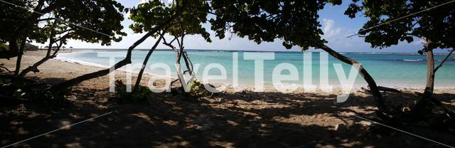 Panorama from Baby beach with trees and shade on Aruba