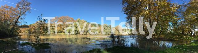 Panorama from the Peneios river and big trees with autumn colors in Thessaly, Greece