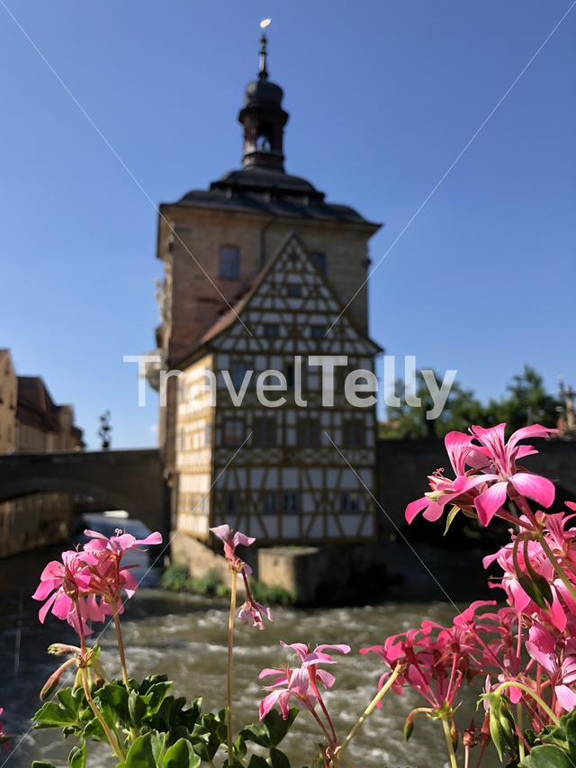 Flower in front of the Altes Rathaus in Bamberg Germany