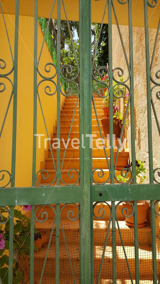 Flowers on the stairs at a house in Lagos Portugal