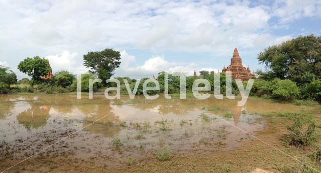 Panorama of the buledi pagoda with reflection in a pond in Bagan Myanmar