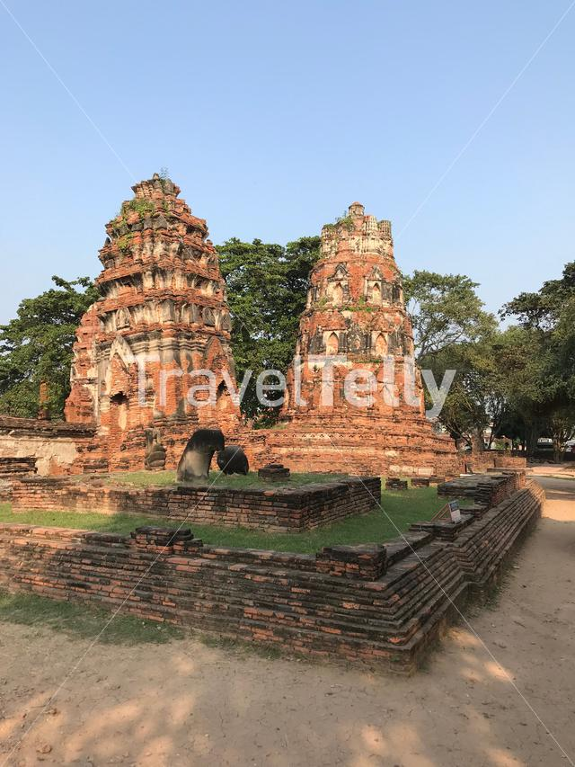 The Wat Mahathat a Buddhist temple in Ayutthaya, Thailand