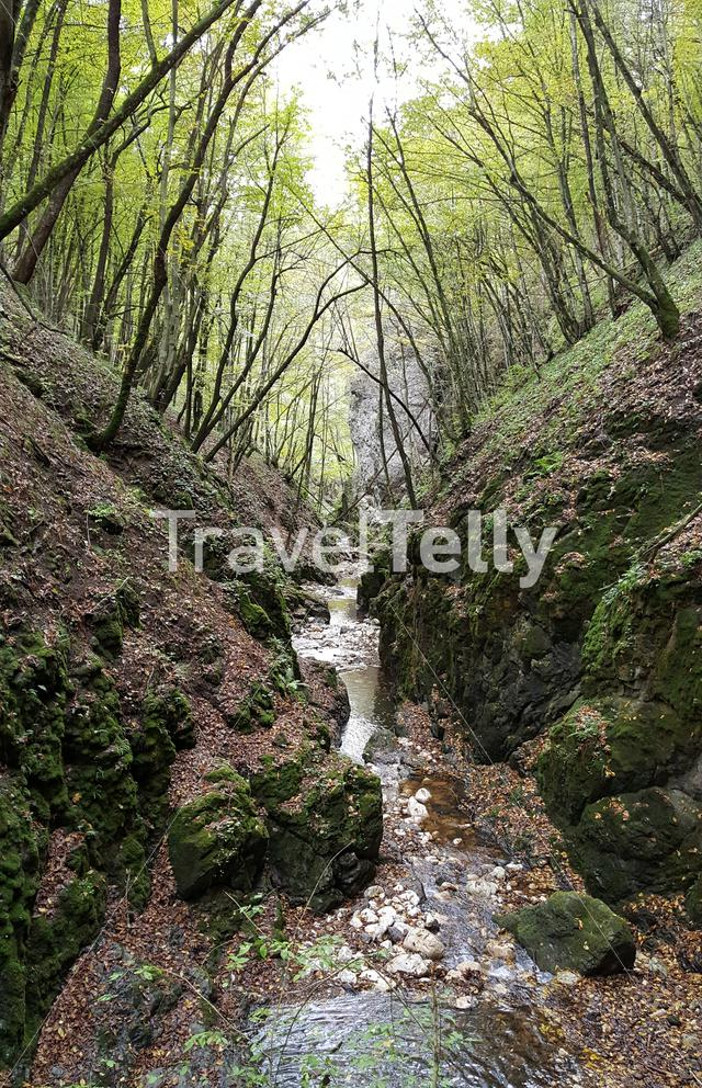 Stream in Berkesi-szoros National reserve in Romania