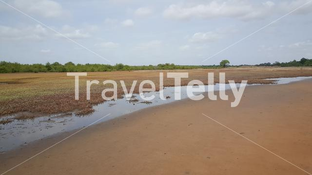 Bao Bolong Wetland Reserve a National park in Gambia, Africa