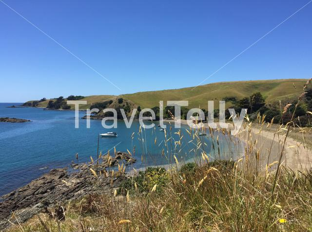 Sandy Bay Motutapu Island Auckland New Zealand