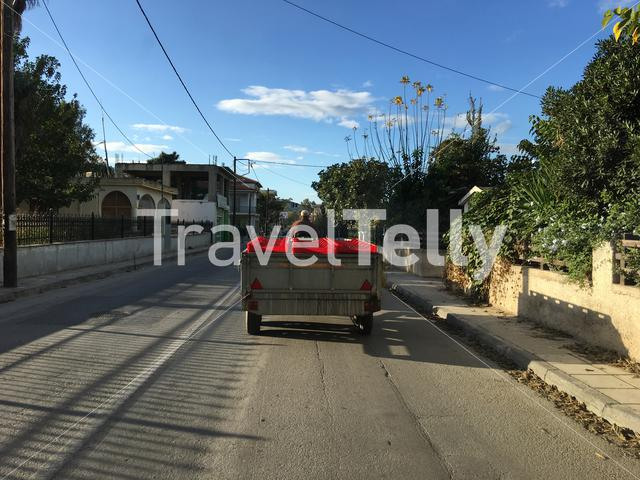 Driving with olives through the streets of Agria Greece