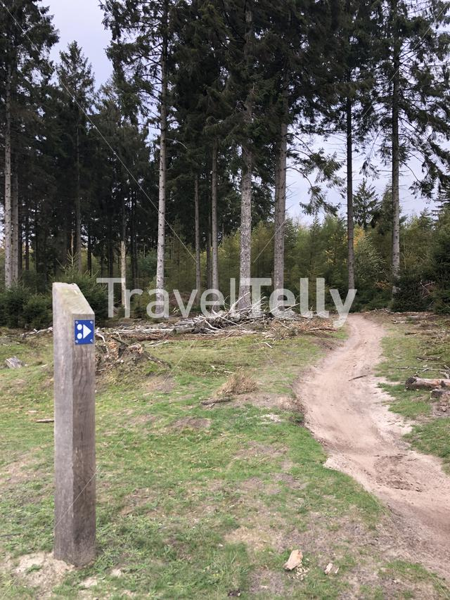 MTB sign at Nationaal Park Drents-Friese Wold in Friesland, The Netherlands