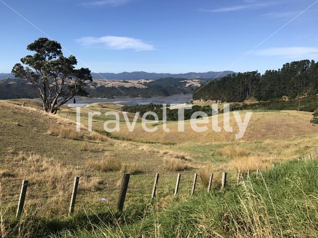 Landscape around Manaia in the North of New Zealand