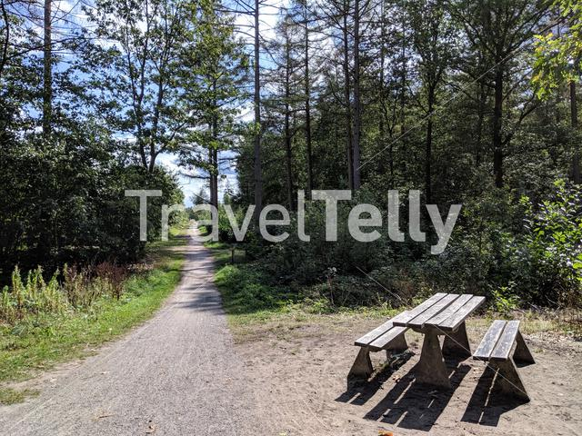 Bench at the Drents-Friese Wold National Park in Drenthe, The Netherlands
